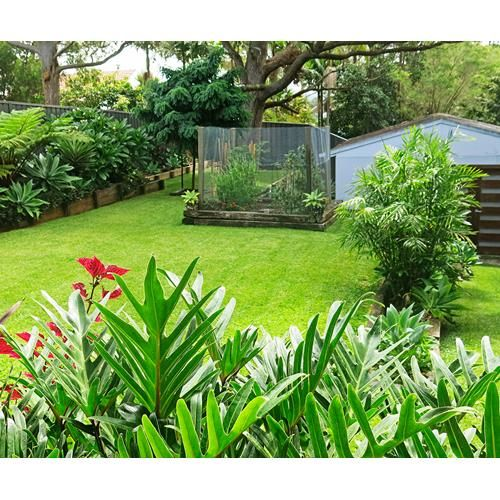 Before and After – A backyard with patchy grass, unsightly weeds and rotting retaining walls in Newcastle receives a much-needed overhaul in this garden makeover.