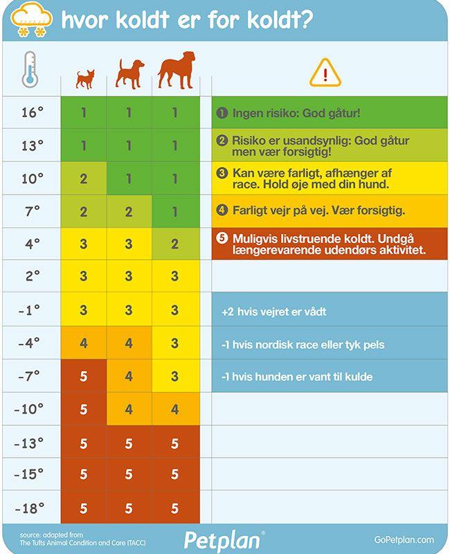 Hunde fryser også. Men hvornår er det for koldt for din hund udenfor? Se skemaet, der helt enkelt viser, om vejret derude er for koldt for din hund.