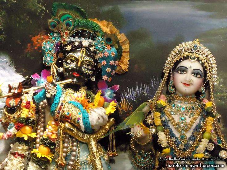 http://harekrishnawallpapers.com/sri-sri-radha-gokulananda-close-up-iskcon-amritsar-wallpaper-007/