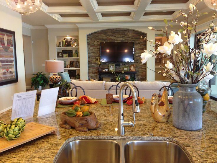 Lee Wetherington Homes Solivita Model In Lakewood Ranch Fl 360 Florida Real Estate