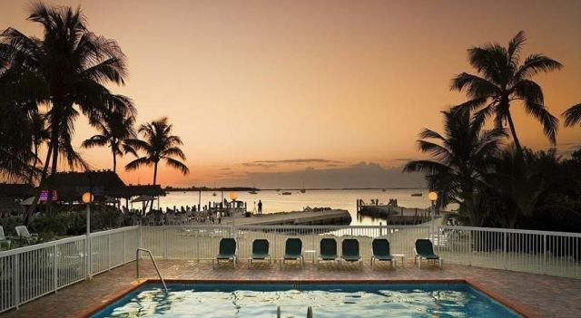 Bayside Inn Key Largo - 3 Star #Inns - $93 - #Hotels #UnitedStatesofAmerica #KeyLargo http://www.justigo.uk/hotels/united-states-of-america/key-largo/key-largo-99490-overseas-hightway_97253.html