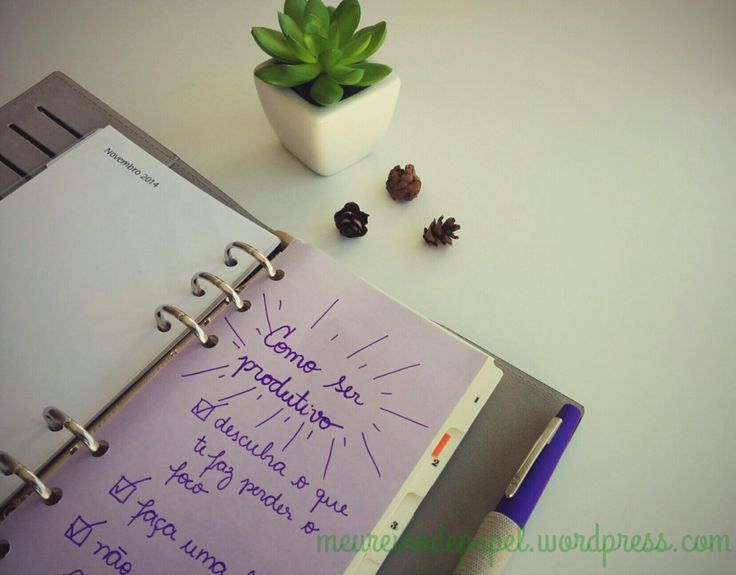 Como ser produtivo - organização pessoal - agenda fichário - como se organizar