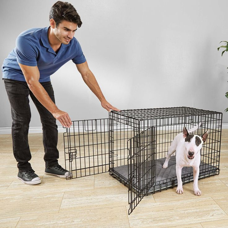 You+&+Me+Ultra+Tough+2-Door+Folding+Dog+Crate+-+Keep+your+canine+secure+and+happy+with+the+versatile+You+&+Me+Ultra+Tough+2-Door+Folding+Dog+Crate.+Reinforced+doors+and+steel+wire+work+together+to+create+a+reliable+training+tool+that+can+prevent+potty+accidents+and+home+damage. - https://www.petco.com/shop/en/petcostore/product/you-and-me-ultra-tough-2-door-folding-dog-crate