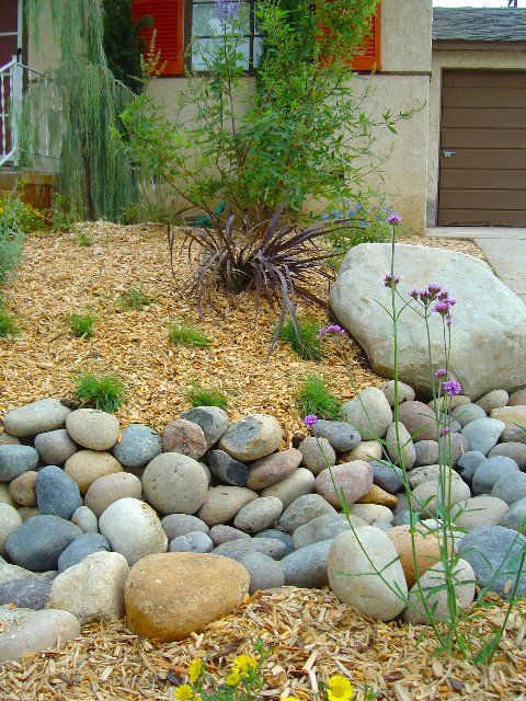 "Extreme lawn makeovers, or ""xeriscape landscaping"" is the use of low water plants to save water in the landscape. Water is a precious commodity these days and in my work as a lands…"