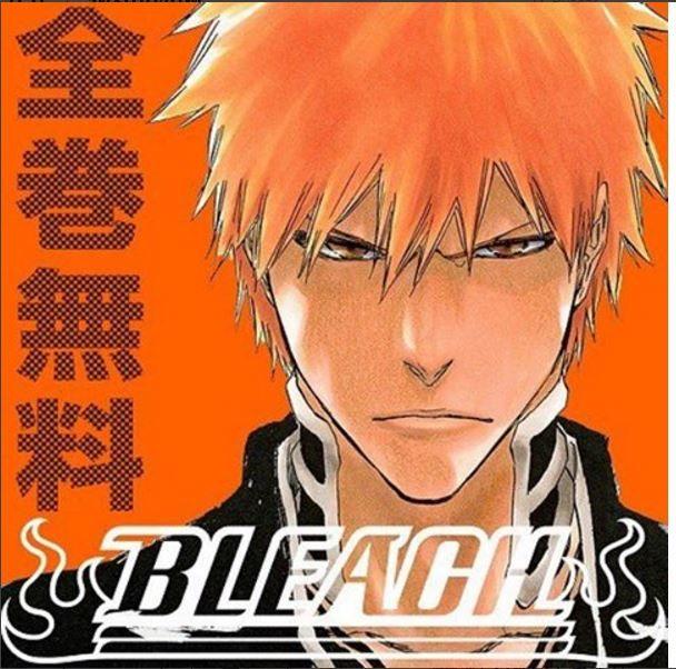 Bleach// Ichigo Kurosaki