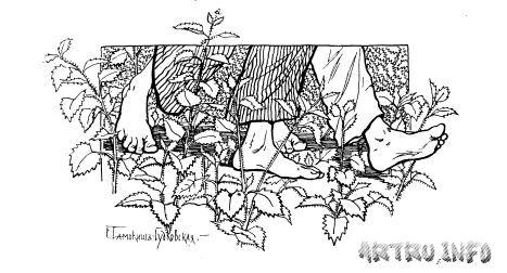 """Елена Самокиш-Судковская, иллюстрация к сказке П.Ершова """"Конёк-горбунок"""""""