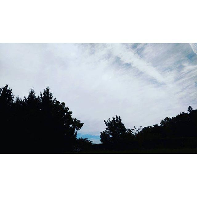 【ywgen】さんのInstagramをピンしています。 《Ой ты, песня, песенка девичья, Ты лети за ясным солнцем вслед. И бойцу на дальнем пограничье От Катюши передай привет. #katyusha #wartunes #skytheme #sky #clouds #blue #grey #forest #lookup #love #空 #雲 #森 #russiansong》