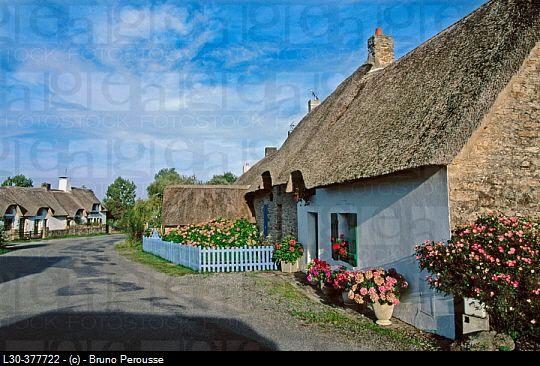 Breca. Marais de la Brière. Loire-Atlantique, France