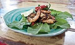 Eumundi Spice Garden for Thai Cooking Classes