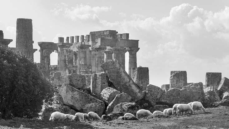 Selinunte était l'une des plus grandes cités grecques de Sicile.