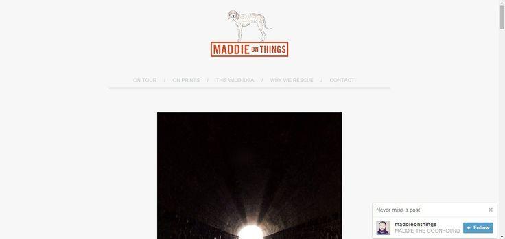http://maddieonthings.com/