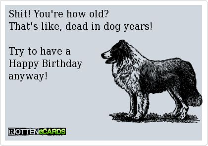 Shit! You're how old? That's like, dead in dog years!  Try to have a  Happy Birthday anyway!