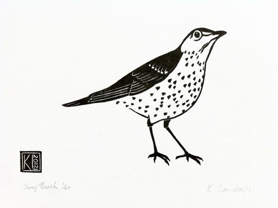 Song Thrush - woodcut print 2012 - Kate Laundon, Scotland U.K.