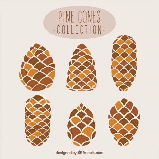 Pine Cone Collection Free Vector