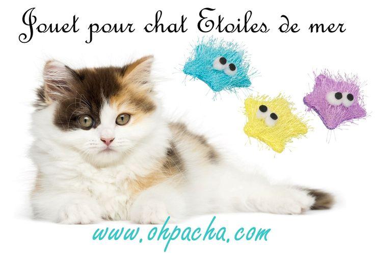 Le jouet pour chat étoiles de mer est en vente chez Oh ! Pacha : http://www.ohpacha.com/jouet-pour-chat/769-jouet-pour-chat-avec-herbe-a-chat.html