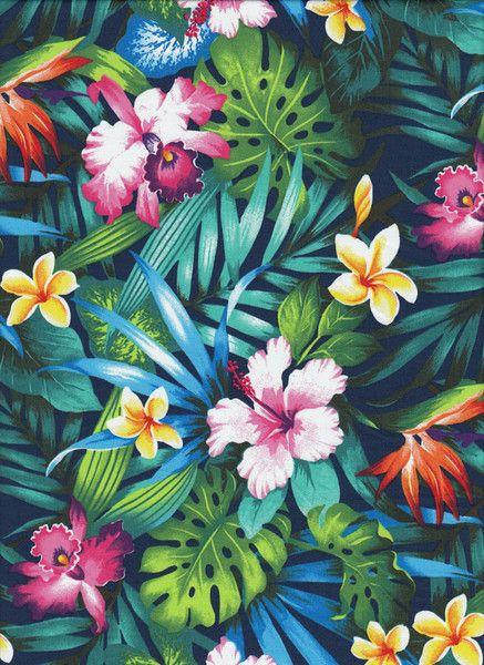 ber ideen zu hawaii blumen auf pinterest hawaii blumen seltene blumen und tropical. Black Bedroom Furniture Sets. Home Design Ideas