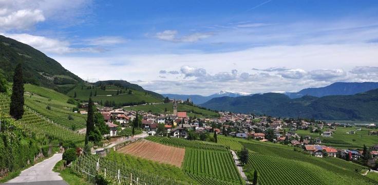 Südtiroler Weinstrasse mit dem Mountainbike - traumhafte Mountainbikerunde. Routenbeschreibung: http://www.almenrausch.at/touren/mountainbiketouren/tour/weinstrassen-rundtour-im-suedtiroler-unterland1771.html