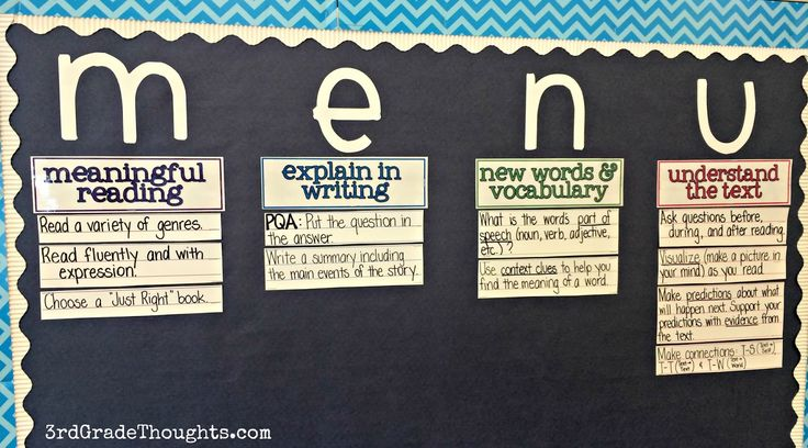 menu: meaningful reading, explain in writing, new words and vocabulary, understand the text   http://www.3rdgradethoughts.com/