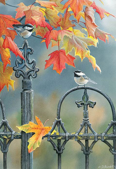 Pretty Little Birds on A Lovely Autumn Day..