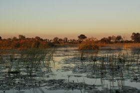 Botswana Classic Safari
