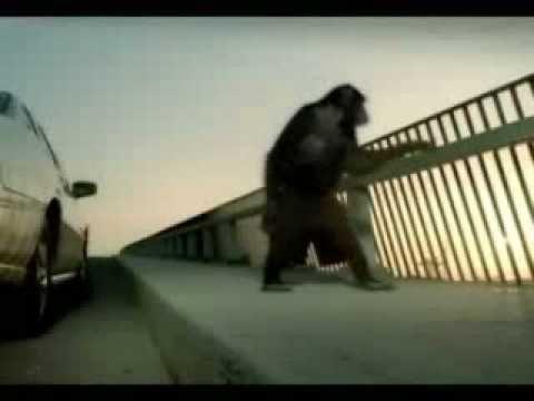 Trunk Monkey Commercials - YouTube