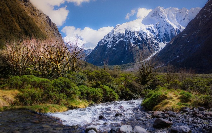 Monkey Creek @ Milford Sound, New Zealand -- from #treyratcliff at www.StuckInCustom... - all images Creative Commons Noncommercial.