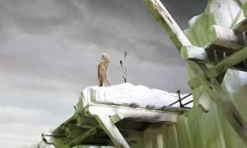 Декорация для Битвы у Стены (четвертый сезон)
