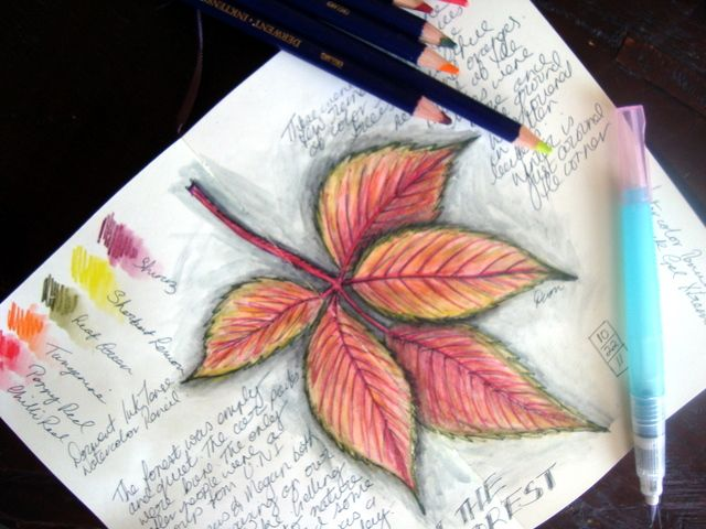 Watercolor Pencil Mysteries Revealed -- Just love the blending, leaves would be a good beginner project.