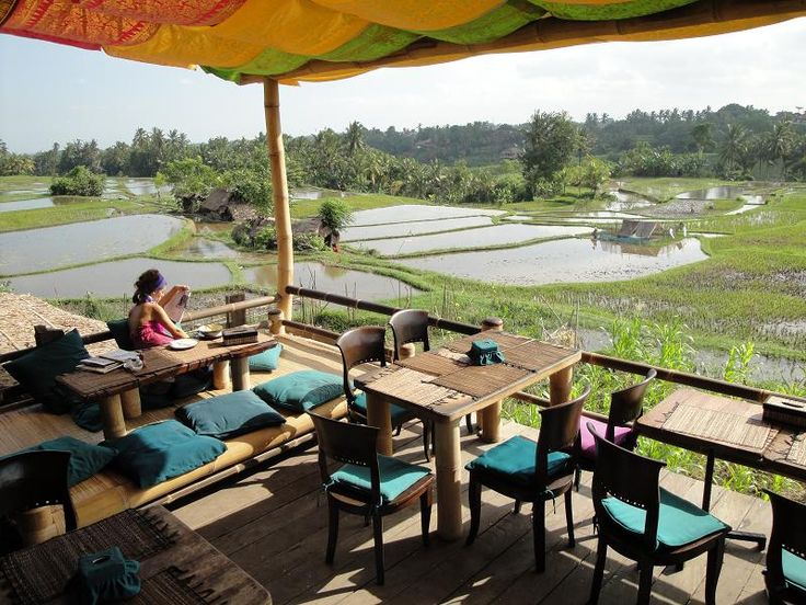 Green is the new black: ultimate guide to eco-friendly Ubud