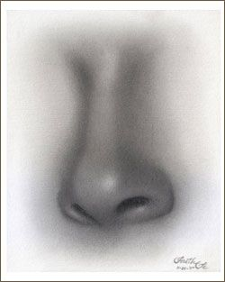 Pencil drawing tutorial- nose