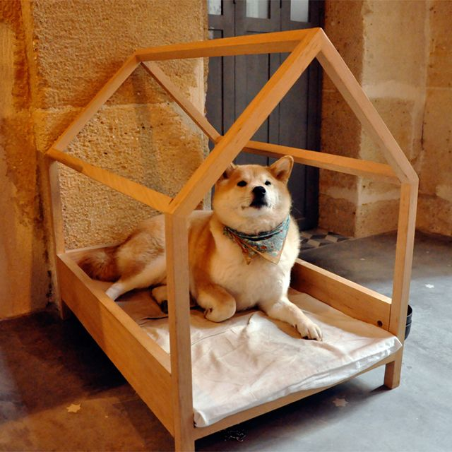 Wood Frame Dog Bed... It just so happen to be a Shiba Inu laying in it. The same breed as my pup.