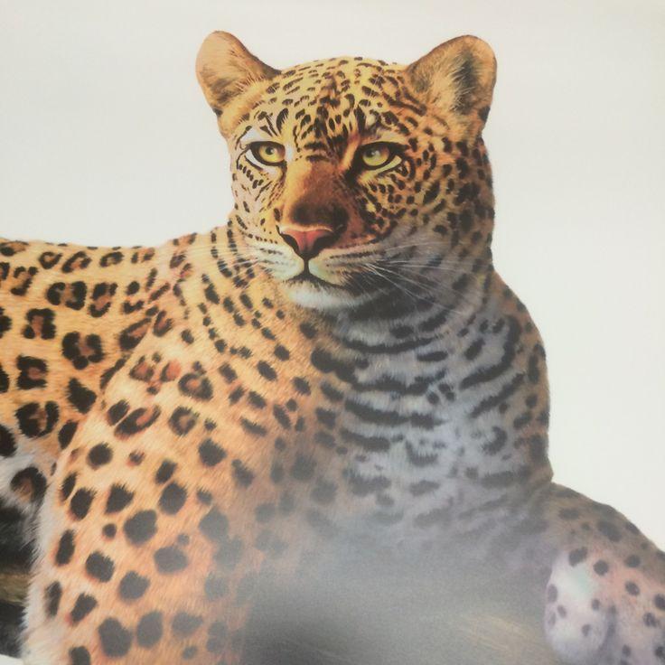 #primedecals #walldecals #leopard #tree #cat