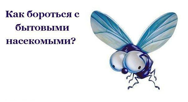 КАК БОРОТЬСЯ С БЫТОВЫМИ НАСЕКОМЫМИ http://pyhtaru.blogspot.com/2017/05/blog-post_17.html  Как бороться с бытовыми насекомыми!  1 Мухи. Комнатные мухи не выносят запаха пижмы: если в комнате будет это растение, мухи улетят.  Читайте еще: =================================== СВЕКОЛЬНЫЙ КВАС ПОЛЬЗА http://pyhtaru.blogspot.ru/2017/05/blog-post_6.html ===================================  2 Меньше мух будет залетать в окно, если смазать рамы уксусом.  3 Мухи не выносят запаха воска, скипидара…
