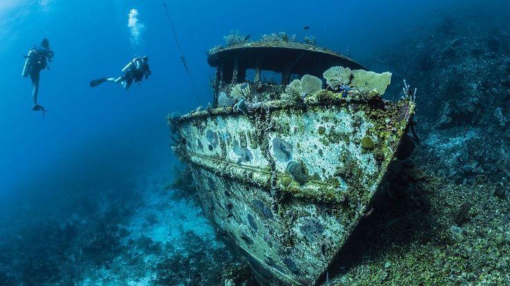 25 Reasons to Dive Roatan  Travel  2018 Scuba Diving Magazine Readers Choice Winner  About 30 miles off the northern coast of Honduras lies the island of Roatan  a diverse scuba diving destination.  If you like our pins please follow us: http://ift.tt/2qGg6EH #ScubaDivingMagazine