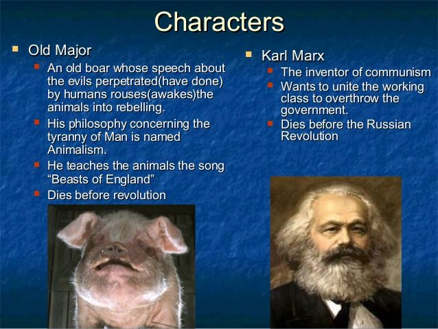 an analysis of animalism versus marxism in the animal farm Animal farm: animalism vs marxism  animalism vs marxism characters, items, and events found in george orwells book, animal farm, can be compared to similar characters, items, and events found in marxism and the 1917 russian revolution.