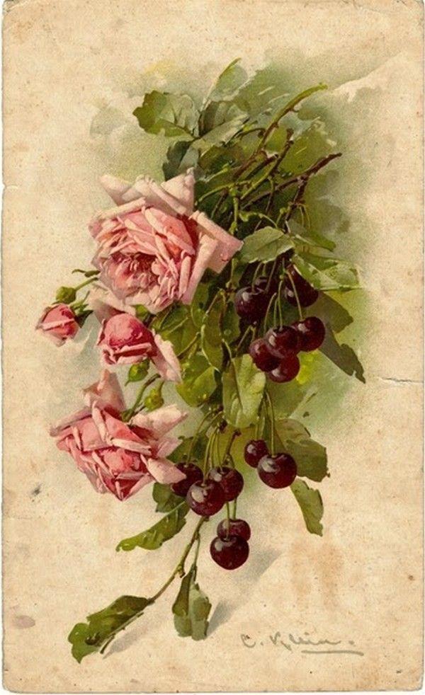 Открытки вишневые розы, нарисовать