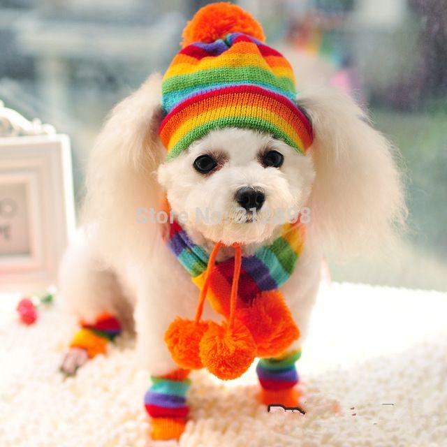 Accesorios Para Perros Mascotas Cachorro Amarillo Rosa Del Arco Iris de Rayas de invierno Sombreros Bufanda Calcetines PT045 Chihuahua Yorkshire Caniche Gato Productos
