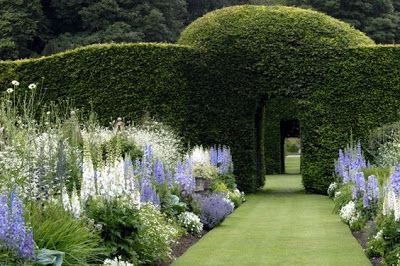 Gardens behind High Hedges (Content in a Cottage)