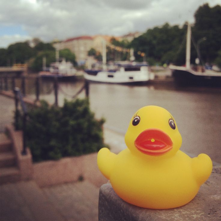 #Ankkaralli #Turku #Duck
