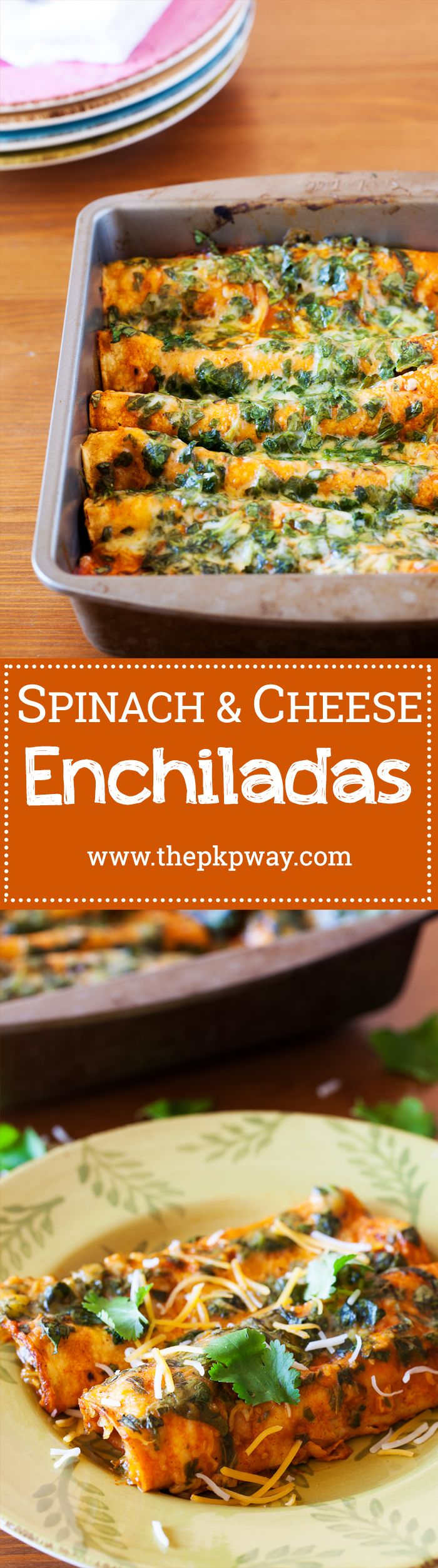Spinach and cheese  enchiladas are a healthy twist on a Mexican favorite. Spinach and cheese filling wrapped in a corn tortilla and doused with a tangy enchilada