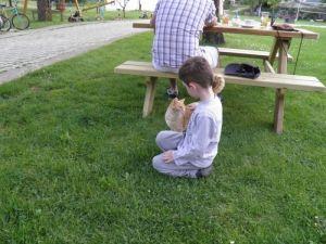 Ο γατούλης, αγροτουριστική Φάρμα, Φάρμα ζώων, Ράντζο πόνυ