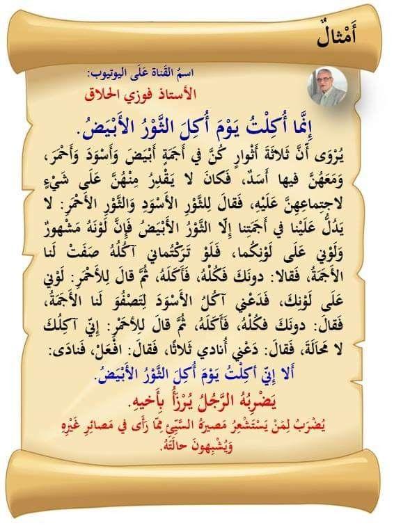 إنما أكلت يوم أكل الثور Calligraphy Arabic Calligraphy