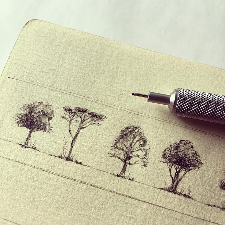 "6,834 Me gusta, 129 comentarios - Notebookmaker and more | ⓢⓟⓐⓘⓝ (@jose_naranja) en Instagram: ""And here a close up to the trees some of you asked me  I don't thinks it's something special but…"""