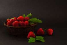strawberries in a basket on a dark background stock photo