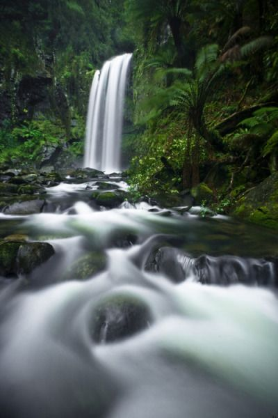 Hopetoun Falls, The Otways | Tom Putt Panoramic Landscape Photography