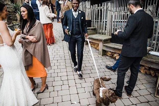 Y E S . @throughthewoodsweran 💥 • • • • • #wearetheweddingcollective #modernwedding #weddingdirectory #thisismycommunity #ukwedding #creativehappenings #indiebride #createcommune #loveauthentic #thevisualscollective #creativebride  #postthepeople #freedomthinkers #peoplecreatives #visualsgang #radlovestories #bohobride #weddinginspiration #exploretocreate #momentsovermountains #modernbride #weddingdog