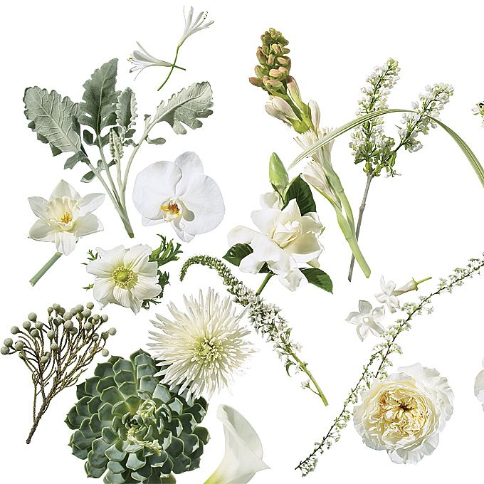 Brides.com: . Click through to see our favorite flowers available in this spectrum—from gray-green to crisp white.