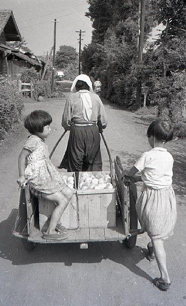 荷物運びのお手伝い=昭和31年8月(佐々木直亮氏撮影)