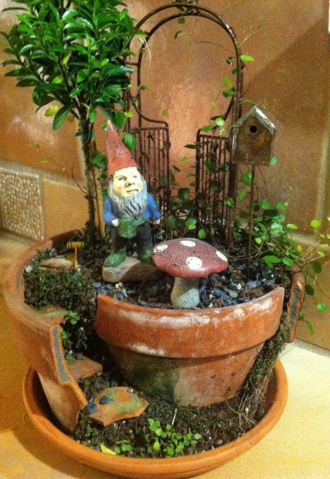 Gnome Garden/Miniature Garden, I Want A Different Gnome But I Totally Want  This