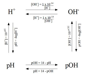 Calculations of pH, pOH, [H+], [OH-]